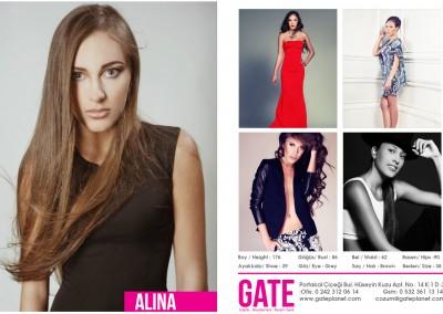 2014-gate-modeling10